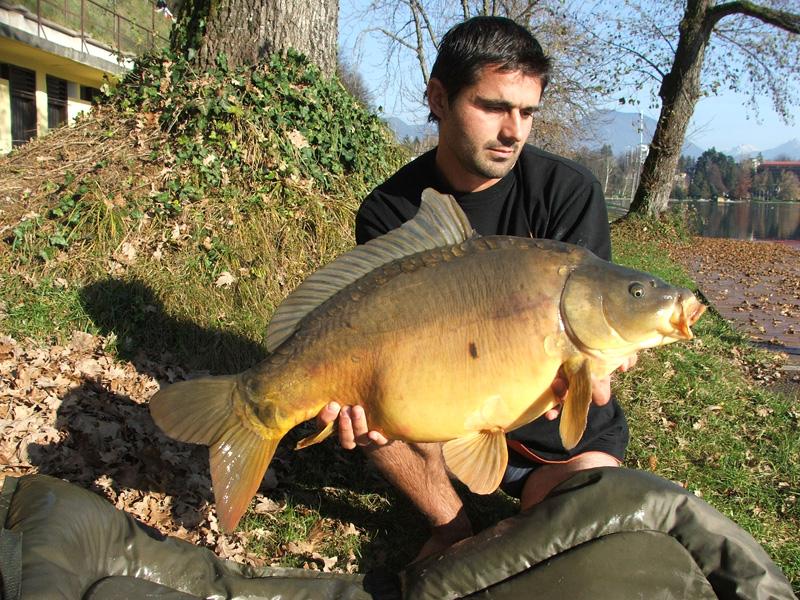 Carp System saranski ribolov